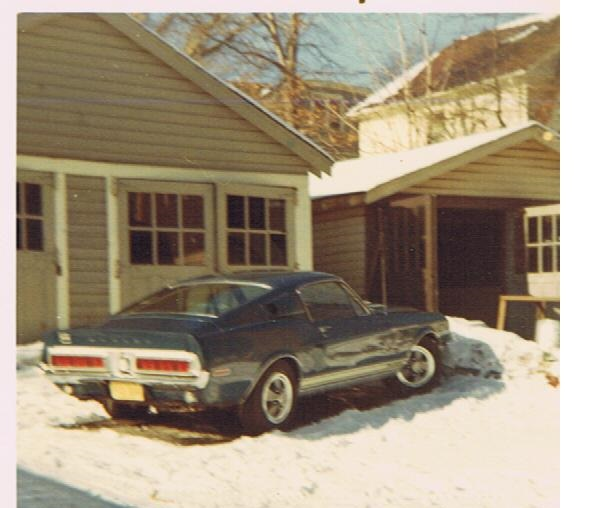 You Are Visting The Best 1968 Shelby Webpage